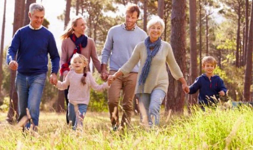 Family & Divorce Law